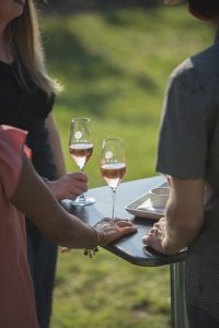 Rose, tasting in the vines, Michigan Sparkling wine, Mawby