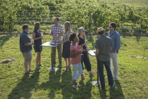 vineyards, party, tasting in the vines, Michigan Sparkling wine, Mawby