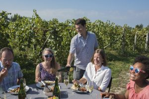 wine and food, al fresco, dining in the vines, Michigan Sparkling wine, Mawby